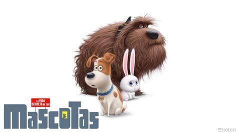 fondos mascotas wallpapers mascotas pelicula gratis