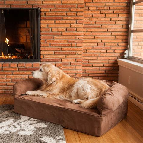 dog beds for the sofa replacement cover snoozer luxury dog sofa dog couch