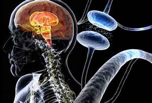 Parkinson U0026 39 S Disease Center  Symptoms  Treatments  Causes  Tests  Diagnosis  And Prognosis