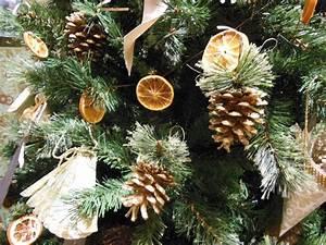 Dried, Orange, Slice, Christmas, Tree, Garland, U2014, Gardening, Charlotte