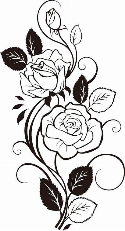 Vine Rose Stencil Tattoo Roses Vector Coloring