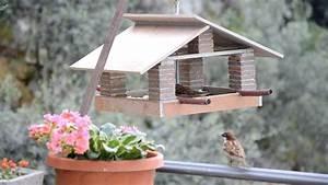 casetta mangiatoia per uccellini house feeder birds YouTube