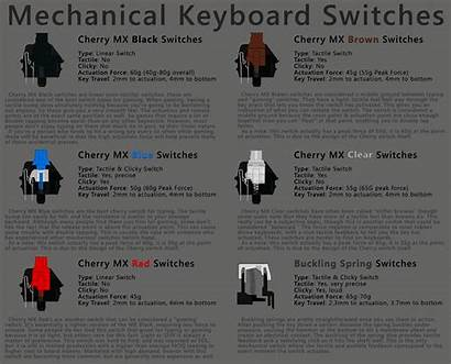 Mechanical Keyboard Switches Switched Expected Monthly Wasn