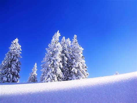 Snow Background Wallpapers Snow Wallpapers