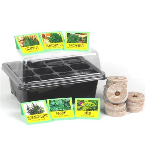 garden starter kit kitchen garden kitchen herb garden seed starter kit