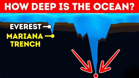 How Deep Is The Ocean In Reality? Youtube