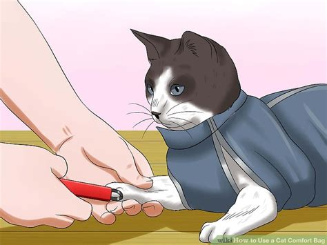 How To Use A Cat Comfort Bag