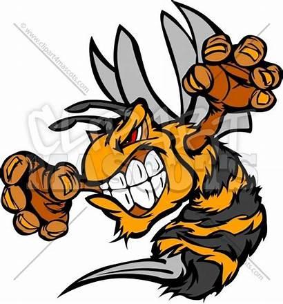 Mascot Yellow Jacket Clipart Bee Cartoon