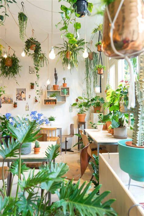 99 Great Ideas To Display Houseplants  Garden Web