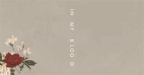 In My Testo by Shawn Mendes Torna Con In My Blood E Testo Della