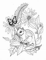 Coloring Adult Butterfly Chipmunk Needle Punch Pattern sketch template
