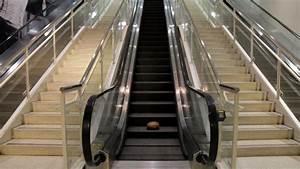 Yes  Ham Goes Up An Escalator