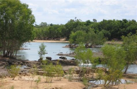 mitchell river queensland wikipedia