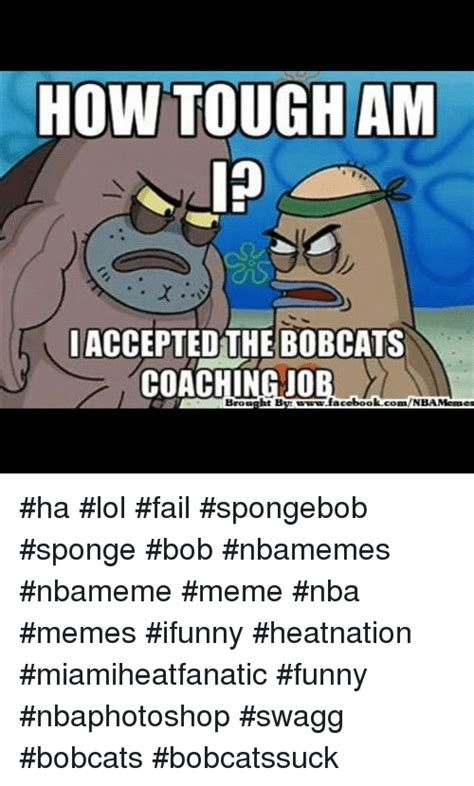 Funny Ifunny Memes - how tough am accepted the bobcats coaching jo brought bs wwwfacebook comnba memes ha lol fail
