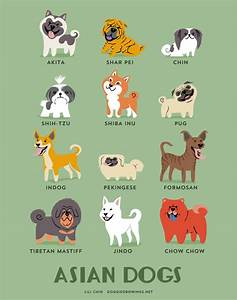 Dogs Of The World: Cute Posters Show The Origins Of 200 ...