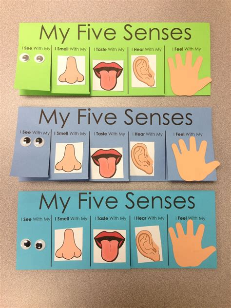 five senses craft flip book visit www 621 | 16a05fe1dcc6680a1f895a152bad01ec