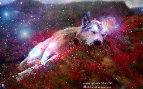 Galaxy Wolf Wallpaper Hd by Galaxy Wolf Wallpaper 26 Images On Genchi Info