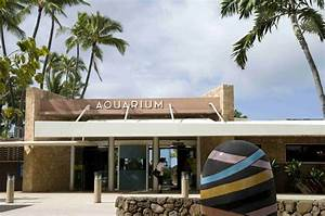 17 top things to do on oahu hawaii
