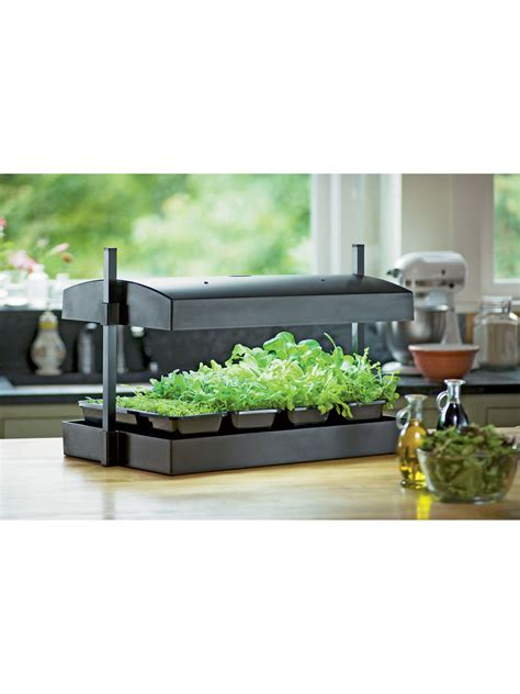 indoor herb garden kit my greens light garden gardener