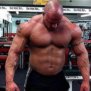 Top 15 Wwe Wrestlers Who Never Took Steroids Lol At  12   Nattyorjuice