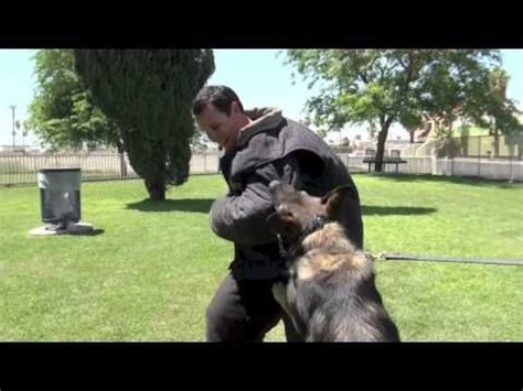 police  training  important component  decoy