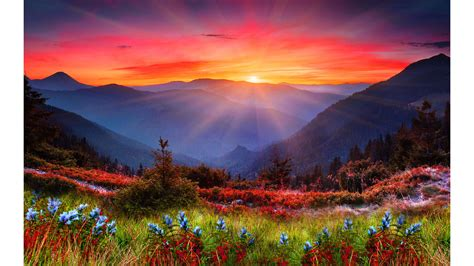 44+ Uhd Wallpapers ·① Download Free Amazing Full Hd