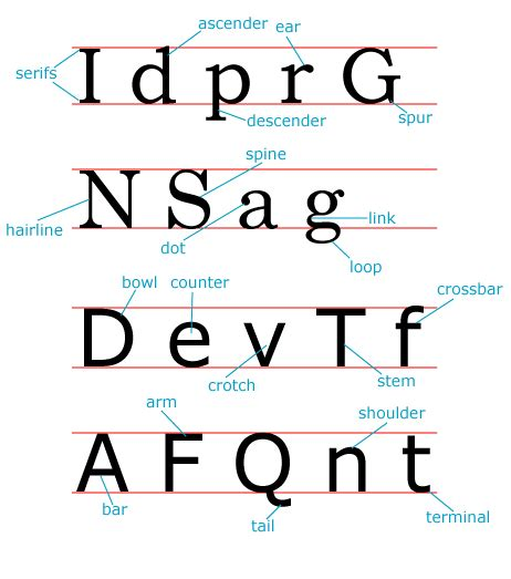 typography for the web typefaces parts of letters