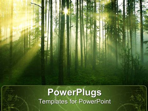 template forest powerpoint template tree with leaves in forest with sun rays passing through trees 28137