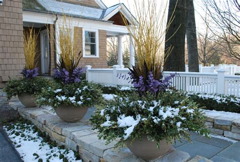 Winter Container Garden Ideas Outdoorthemecom