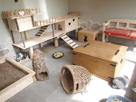 sugar glider cage indoor setup great rabbit home ideas