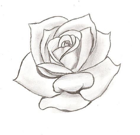 rose stencil cake ideas  designs  images roses