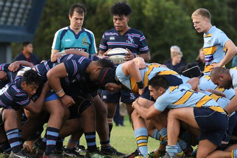 st xv page sacred heart rugby union
