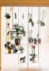 Suspension Pour Plante : un mur d 39 orchid es une suspension jo a orchidaceae ~ Premium-room.com Idées de Décoration