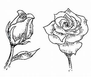 Schöne Muster Zum Selber Malen : einfache sch ne bilder zum selber malen mit anleitung sitzenden frosch zeichnen kunst pinterest ~ Orissabook.com Haus und Dekorationen