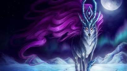 Wolf Animated Animals Desktop Background Polar