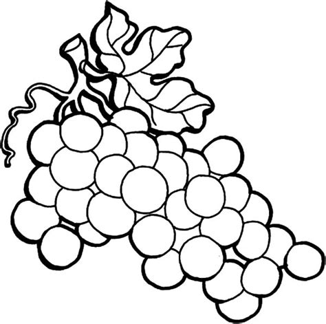 Coloring Grapes by Grapes From Spain Coloring Pages Color