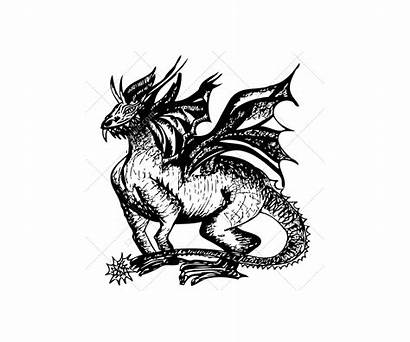 Dragon Sketch Vectors Dragons Graphic Realistic Skulls
