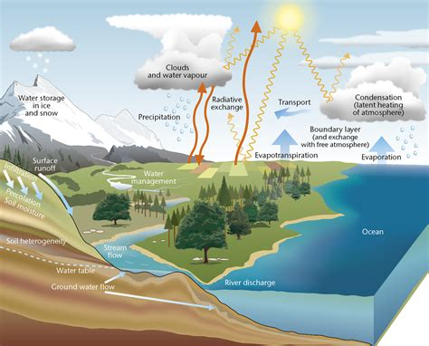 Water Cycle Diagram Earthguide by Water Cycle Met Office