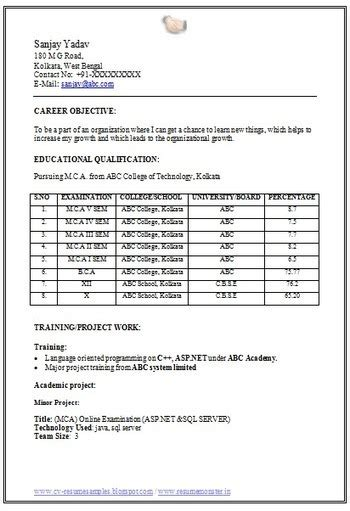 resume format for freshers b tech cse order custom essay
