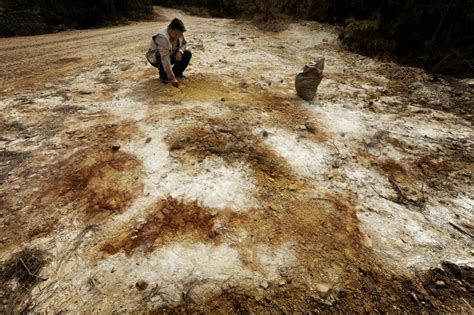 chinas soil heavily polluted  mining industry report