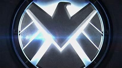 Soldier Wattpad Marvel Insight Ghost Winter Redefined