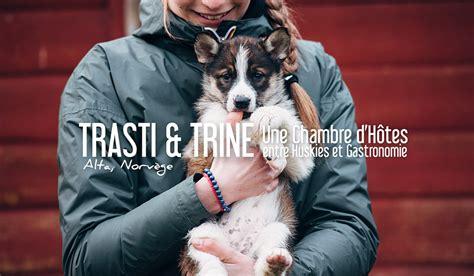 chambre d hotes en corse du nord norvège une chambre d 39 hôtes entre huskies et gastronomie