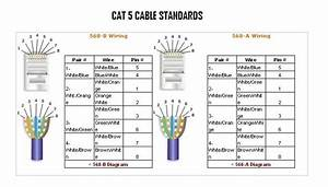 standard cat 5 wiring diagram wiring diagram and With cat 5 cable wiring