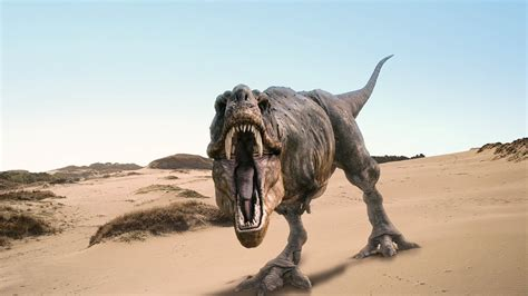 world  animals dinosaurs  wallpapers
