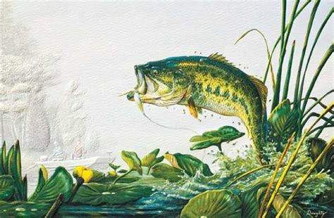 bass fishing fishing greeting cards