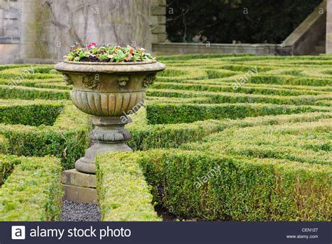 formal garden box hedging layout  pollok house