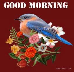 Good Morning Beautiful Graphics