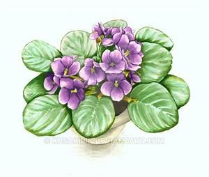 African Violet Flower Drawing | www.pixshark.com - Images ...