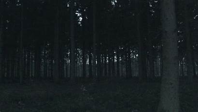 Dark Fall Nature Forest Woods Animated Gifs