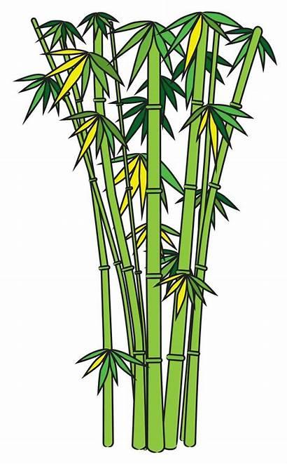 Bamboo Tree Clipart